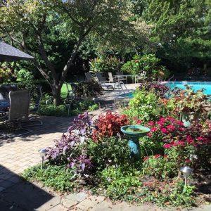 backyard blues party - garden blues party